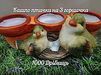Кашпо Кактусник Птички на 3 Горшка К2.041.25