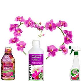 Добрива для орхідей