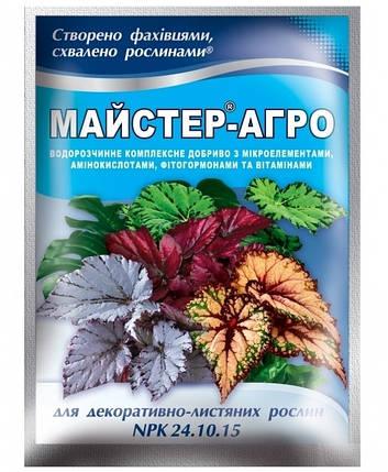 Комплексное минеральное удобрение Мастер-Агро 25г - для декоративно-лиственных растений / NPK 24.10.15, фото 2