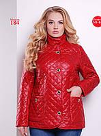 Женская демисезонная куртка полуприлегающего  силуэта из плащевой водоотталкивающей ткани  Разные цвета
