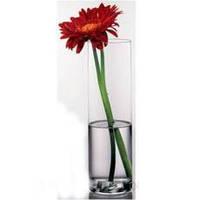 Ваза цилиндр Flora 30 см