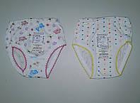 Трусики для девочки р.52,56,60 ТМ Фламинго