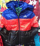 """Детская куртка ветровка на мальчика """"Adidas"""" оптом на 3-7 лет электрик"""