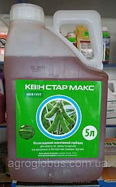 Послевсходовый гербицид Квин Стар Макс для подсолнечника,рапс,соя.