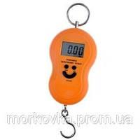 Кантерные Кантер электронные весы рыбака безмен 40 кг ACS 168 40кг Smile,