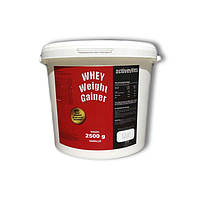 Гейнер Activevites WHEY Weight Gainer (12% protein ) 2500g