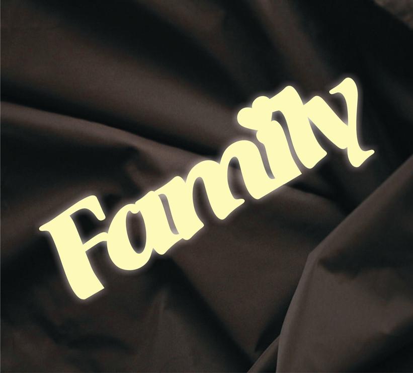 Объемная надпись Family 2