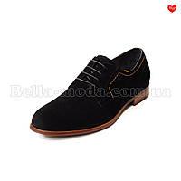 Мужские туфли Cosottinni на шнураках