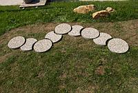 Дорожка Садовая из мытого бетона