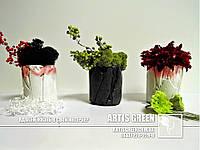 Экосувениры Artis Green