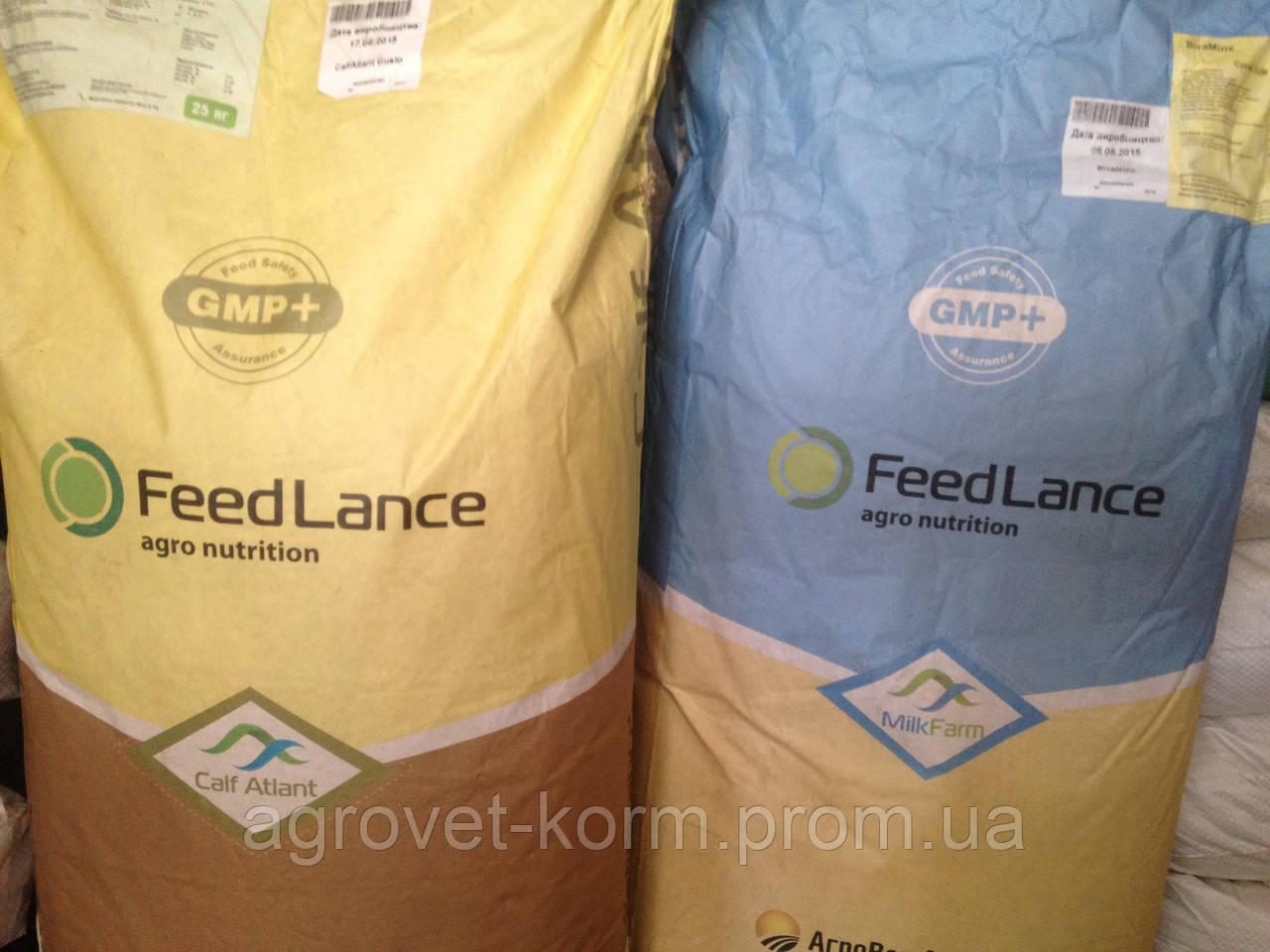 Агроветатлантiк ТМ Здорова  Cow Energy (за 3 тижні до отелу та до 3 місяців лактації) для корiв, 25 кг