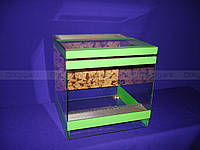 "Террариум ""кубик 25 см."" зеленый"