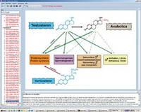 Программа «Гормоны, гормональная система и контроль», на компакт-диске