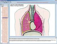 Программа «Дыхательная и сердечно-сосудистая система человека, сердце человека», на компакт-диске