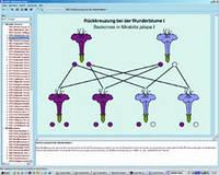 Программа «Законы Менделя, модификация и мутация», на компакт-диске