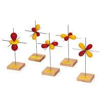 Набор из 5 моделей d-орбиталей