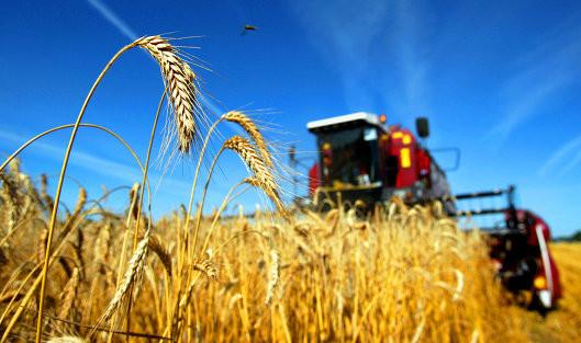 Что нужно сделать аграриям, чтобы перейти на общую систему НДС?