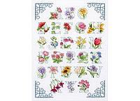 """Набор для вышивания """"Цветочный алфавит (Floral Alphabet)"""" ANCHOR"""