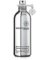 MONTALE EMBRUNS D`ESSAOUIRA Парфюмированая вода, 100 мл, Унисекс, Тестер
