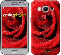 """Чехол на Samsung Galaxy Core Prime VE G361H Красная роза """"529c-211"""""""