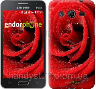 "Чехол на Samsung Galaxy Core 2 G355 Красная роза ""529c-75"""