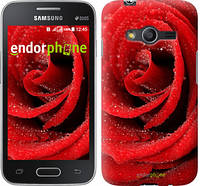 "Чехол на Samsung Galaxy Ace 4 G313 Красная роза ""529u-207"""