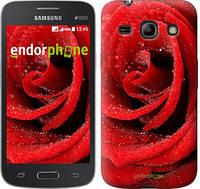 "Чехол на Samsung Galaxy Star Advance G350E Красная роза ""529u-210"""