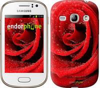 "Чехол на Samsung Galaxy Fame S6810 Красная роза ""529u-254"""