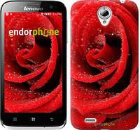 "Чехол на Lenovo A859 Красная роза ""529u-197"""