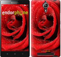 """Чехол на Lenovo Vibe C2 Красная роза """"529c-397"""""""