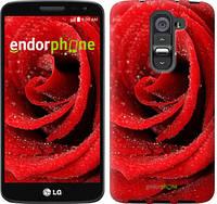 """Чехол на LG G2 mini D618 Красная роза """"529u-304"""""""