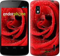 """Чехол на LG Nexus 4 E960 Красная роза """"529u-203"""""""