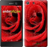 "Чехол на Sony Xperia M5 Красная роза ""529c-217"""