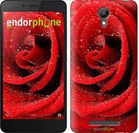 "Чехол на Xiaomi Redmi Note 2 Красная роза ""529c-96"""