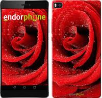 """Чехол на Huawei Ascend P8 Красная роза """"529u-123"""""""