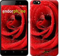"""Чехол на Huawei Honor 4X Красная роза """"529u-166"""""""