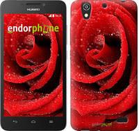 """Чехол на Huawei Ascend G630 Красная роза """"529u-137"""""""