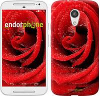 "Чехол на Motorola Moto G2 Красная роза ""529u-330"""