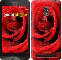 """Чехол на Asus ZenFone 6 A600CG Красная роза """"529u-143"""""""