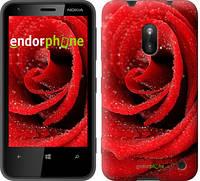 "Чехол на Nokia Lumia 620 Красная роза ""529u-249"""