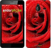 """Чехол на Microsoft Lumia 640 XL Красная роза """"529u-168"""""""