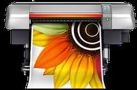 Широкоформатная печать на бумаге City-light, 720х720 dpi