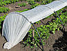 Парник Агро - Теплица из агроволокна 6 метров укомплектован колышками, фото 2