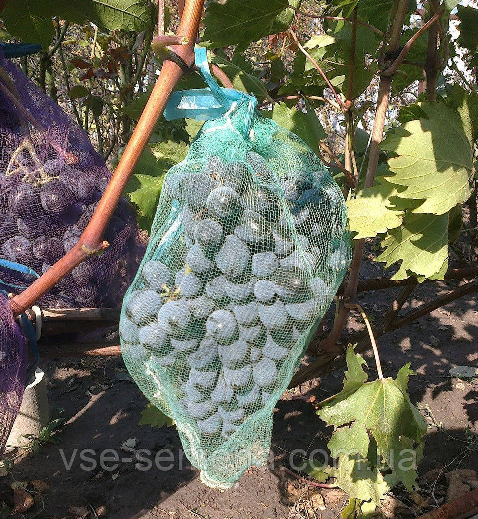 Сетка на виноград (мешки от ос на виноград ) (28 см х 40 см, 5 кг)  50 шт