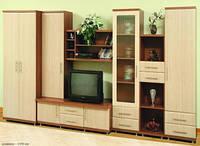Система мебели Дебют 2 купить недорого в Днепре, доставка