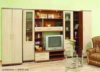 Система мебели Дебют 4 купить недорого в Днепре, доставка