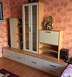 Мебель для гостиной с фасадами МДФ на заказ, фото 2