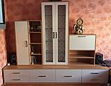 Мебель для гостиной с фасадами МДФ на заказ, фото 3