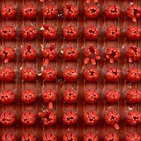 Щетинистое покрытие Palace Red 20