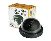 Купольная камера видеонаблюдения обманка муляж